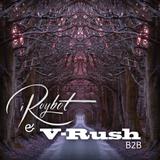 V-Rush vs. iRoybot B2B