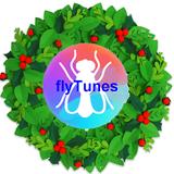 A Very Fly Christmas 2019