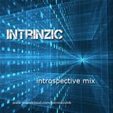 introspective mix