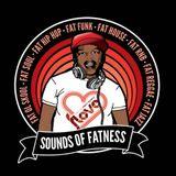 Fat Freddie M Live at Hayling Island 2014