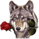Valentines Day Mix '13