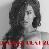 PLEASURE BEAT 2013 - PAVLOS SPECIAL MIX 2 (dj mixpit)