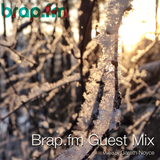 Brap.FM Guest Mix: Feb 2014