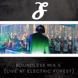 Boundless Mix 5 (Live at Electric Forest)