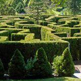 ThE Labyrinth MiX