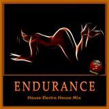 Endurance (TAmaTto 2016 House-Electro House Mix)