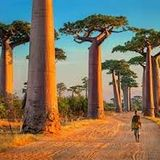 JOHNNY DRENO AFRICA LOVE 7 MIXTAPE 2019