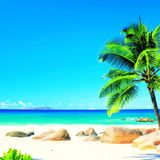 marina playa beach resort live remix 2014