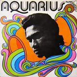 Herman Chin Loy | Aquarius Rock