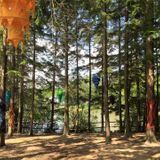 Live at Alfresco Festival :: May 27, 2017 :: t'was a beautiful day in the woods