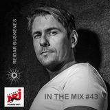 In The Mix #43