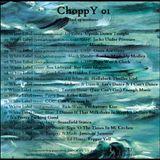 SeeWhy ChoppY01