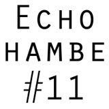 Echo Chamber #11