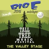 BIG E - Tall Tree 2016 Valley Stage
