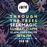 Through The Trees 1BTN fm 18.02.18 with Seekmagic guest mix!