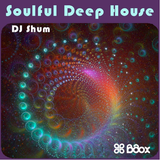 DJ SHUM - Soulful Deep Huose (part3)