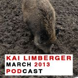 Kai Limberger Podcast March 2013
