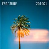 Fracture 2019Q1