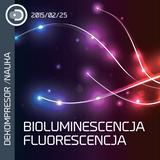 Świecące żaby, małpy i nerwy - bioluminescencja i fluorescencja