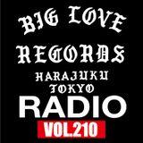BIG LOVE RECORDS RADIO vol,210 (JAN.06.2019) [THE BEST ALBUM OF 2018 Extra]