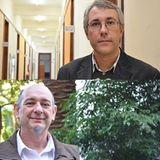 Entrevista a Mag. Luis Machado y Dr. Ricardo Lema sobre la Maestría en Ocio, Turismo y Recreación