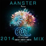 AAnster's EDC 2014 Mix