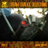 Steam Chalice selections pt. 2 - New Reggae Juggling Feb. 2013