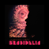 Brasidelia