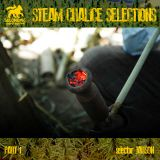 Steam Chalice selections pt.1 - New Reggae juggling Feb. 2013