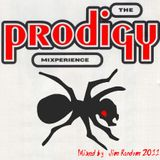 The Prodigy Mixperience by Jim Random