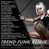 TREND FUNK REMIX (Herb Alpert,Hi Gloss,Dionne Warwick,Tina Turner,Chaka Khan,Nowsense,Delegation,..)