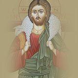 De Cima Dos Telhados (INSTRUÇÃO 24) 9.6 - O Bom Pastor, modelo de toda Autoridade