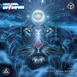AAA - Lion Luna LuvDown - LIVE at Asheville Full Moon Gathering January 2016