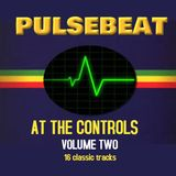 Pulsebeat At The Controls Volume Two