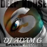 Deep House Sessions 05 Spinnin Records