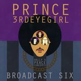 Prince - Dreamer (Dance Rally 4 Peace, Paisley Park, Chanhassen, MN, 3 May 2015 AM)