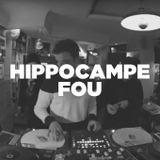 Hippocampe Fou • Live session • LeMellotron.com