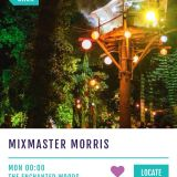 Mixmaster Morris @  Shambala Treehouse 1