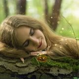 Elvya Dulcimer   Magical Forests and beauty of nature
