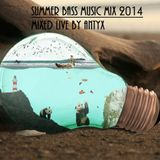 Summer Bass Music Mix 2014 Mixed By Antyx