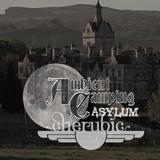 Cherubic Live at Ambient Camping 46 : Asylum