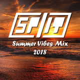 Dj Split Summer Vibes Mix