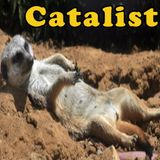 Catalist drops the bumbaclaat heat in this all wax mix sure to make your gravy wavy.