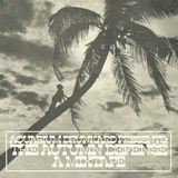 The Autumn Defense/ A Mixtape