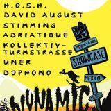 David August - Live @ BPM 2014 Diynamic Showcase, Blue Parrot - 09.01.2014