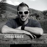 Dibblebee Top 10 Dance Songs of the Week ft Interview With  Symmetrix Recorded Nov 9, 2018