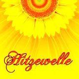 $ony - Hitzewelle (Promo Mix)