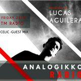 analogikko radio Celic guest mix - TM RADIO - Episode 021
