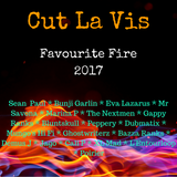Favourite Fire 2017
