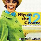 Hip to the Groove12 -y space select